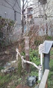 元麻布宮村池